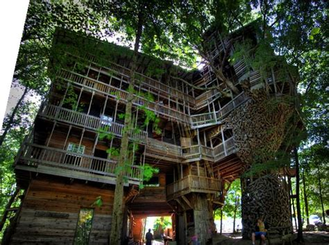 world s biggest tree house the world s largest tree house damn cool pictures