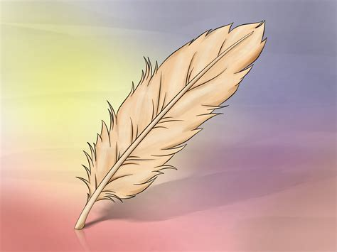 Home Decorations Ideas For Free by How To Draw A Feather 8 Steps With Pictures Wikihow