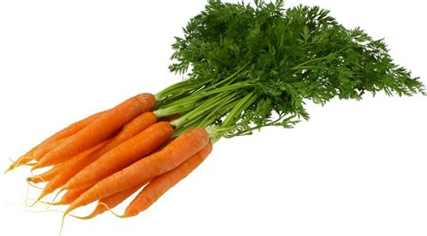 pictures of vegetables top 10 greatest vegetables for your health