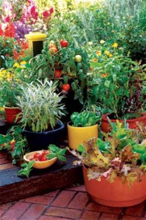 organic container vegetable gardening container vegetable gardening is awesome it allows