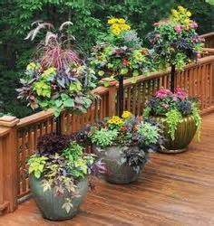 container gardening ideas images container