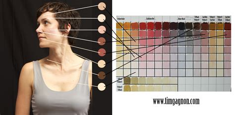 tim gagnon the color palette for skin tones a bit easier references