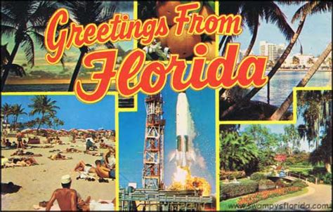 the book of seffers books swy s florida postcards greetings from 1968 florida