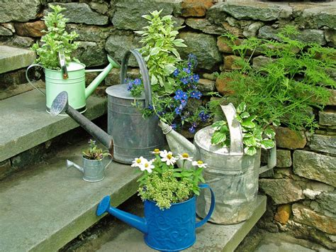 unique planters stunning low budget container gardens landscaping ideas