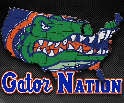 florida cool cool florida gator wallpapers wallpapersafari