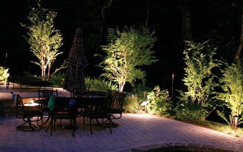 illuminazione alberi guida all illuminazione alberi e piante parco