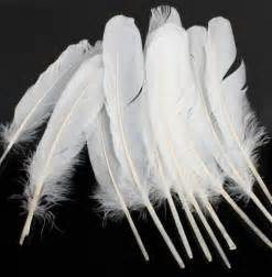 white feather quills for crafts package of 12 feathers amp boas basic craft supplies craft