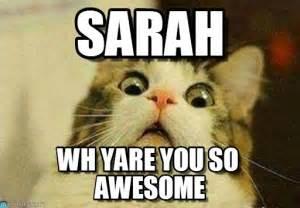 Sarah Meme - sarah sarah meme on memegen