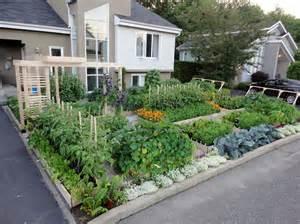 Front Yard Vegetable Garden Ideas Backyard Garden Designs