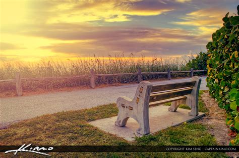 bench on the beach bench at the beach watching the sunrise florida