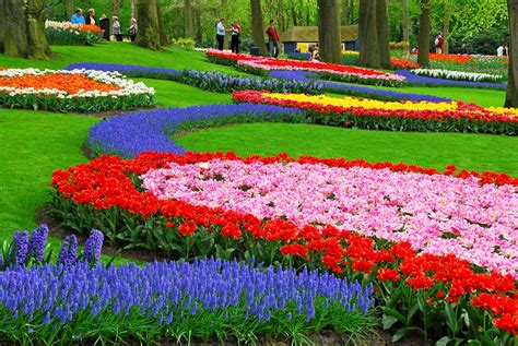 amazing gardens amazing and beautiful gardens from around the earth