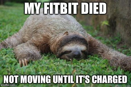 Fitness Sloth Meme - 54 best exercise humor images on pinterest workout humor