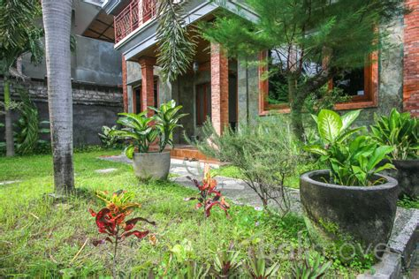3 bedrooms house for rent three bedroom house with big garden on 500m2 land sanur