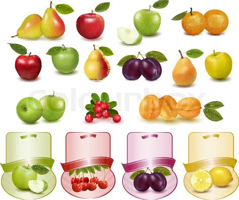 Etiketten Drucken Apple by Group With Different Sorts Of Fruit And Labels Stock