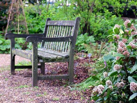 peaceful garden bench benches pinterest