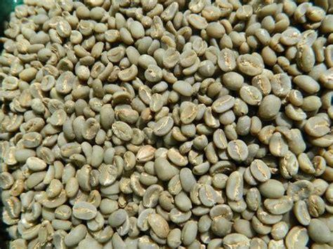 Green Coffee Kayumas java organic rfa kayumas taman dadar hulled coffee