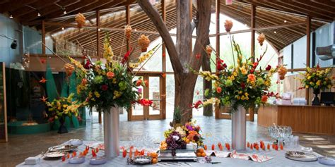 Wedding Venues Arlington Tx by Wedding Venues In Arlington Mini Bridal