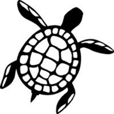simple sea turtle drawing www pixshark com images