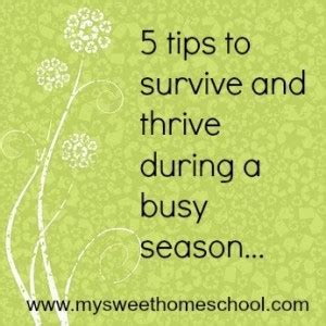 5 tips to survive and thrive during a busy season my