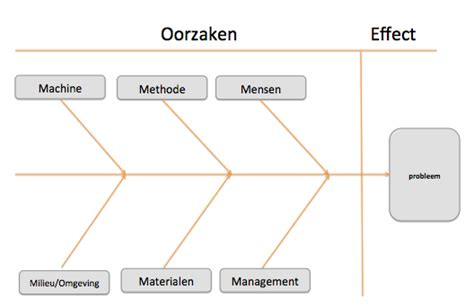 visgraat diagram ishikawa lean wiki