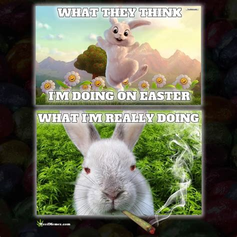 Easter Memes by Top 10 Best Happy Easter Weed Memes Stoner Easter Bunny