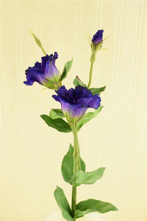 Mirror Pedestals Lisianthus Flower Purple 25in