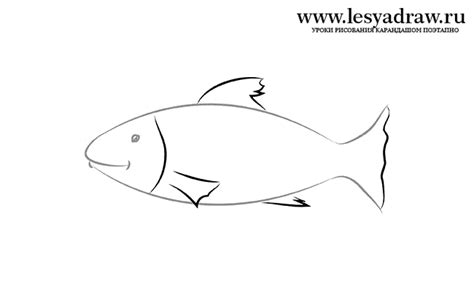 How To Draw A Small Fish how to draw a small fish to the child