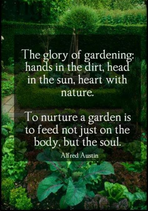 Vegetable Garden Quotes Garden Therapy Quotes Terrapy Garden Therapy