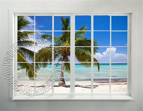 French Wall Murals palm beach window peel amp stick wall mural themuralstore com