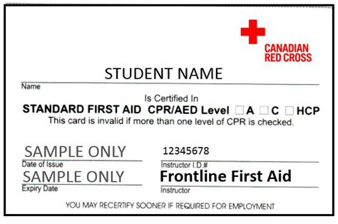 aid certification card template kelowna standard aid courses cpr aed included