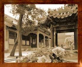 giardino imperiale giardino imperiale
