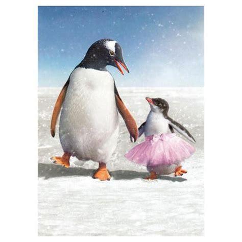 s day penguin penguin s day card penguin gift shop