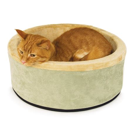 cat beds amazon amazon com k h manufacturing thermo kitty bed small sage