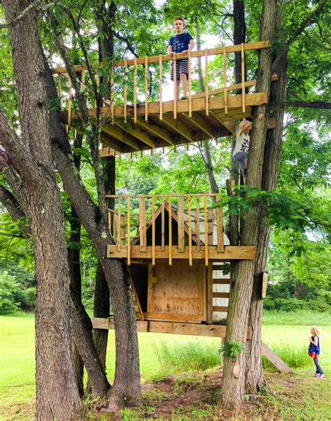 treehouse living tree house living room fort