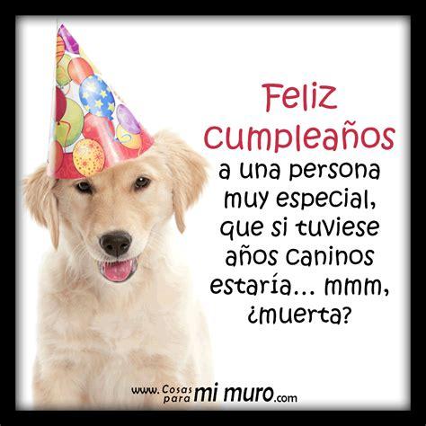 imagenes graciosas de cumpleaños con animales feliz cumplea 241 os suerte que no eres perro cosas para mi