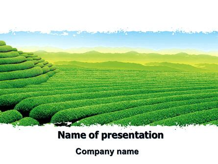 Tea Plantation Powerpoint Template Backgrounds 06526 Poweredtemplate Com Agriculture Powerpoint Templates