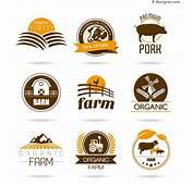 4 Designer  Agricultural Logo Vector