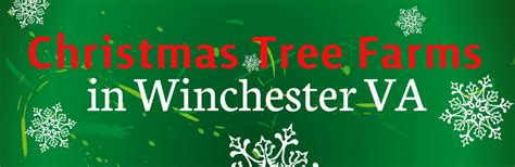christmas tree farms in winchester va