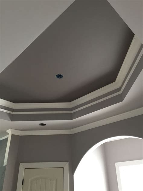 master bath tray ceiling sherwin williams mink  proper