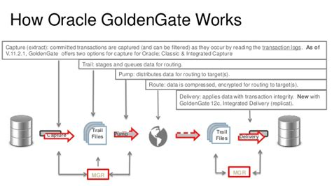 master oracle golden gate 12c beginners to advance golden gate administration with two real time hybrid replication projects inside books replication performance tuning oracle goldengate