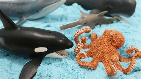 Sea Animal 2 by Learning Whales Sea Animals With Sea Animal Toys And