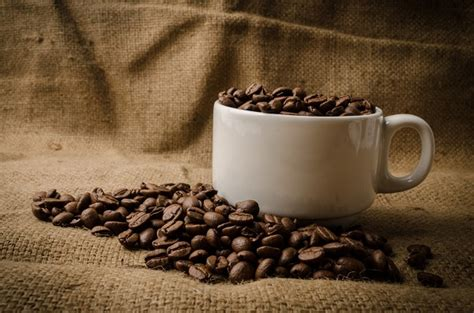 what is stronger light or dark roast coffee light vs dark roast coffee what is the healthier option