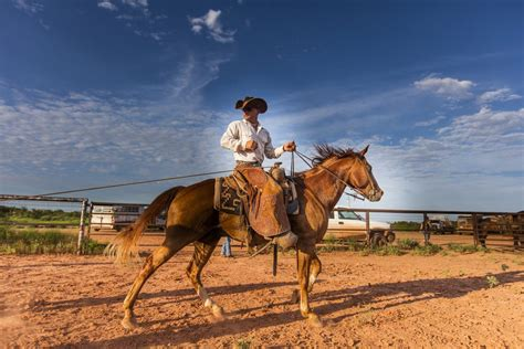 guardian cowboy cowboys of ranch books cowboys of waggoner ranch