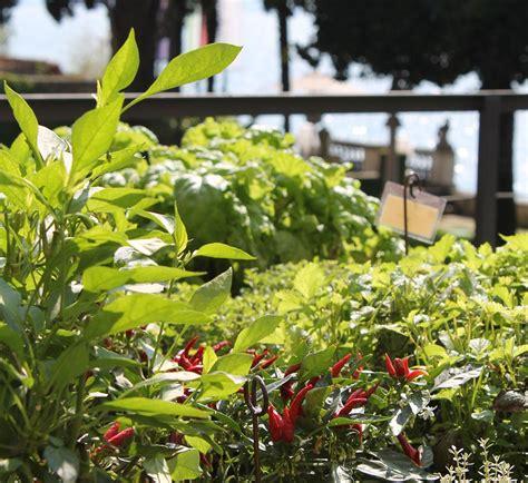 giardino delle erbe il giardino delle erbe aromatiche villa paradiso la