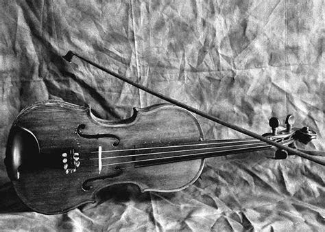 Tech Wall Art by Violin In Black And White Photograph By Cherie Haines