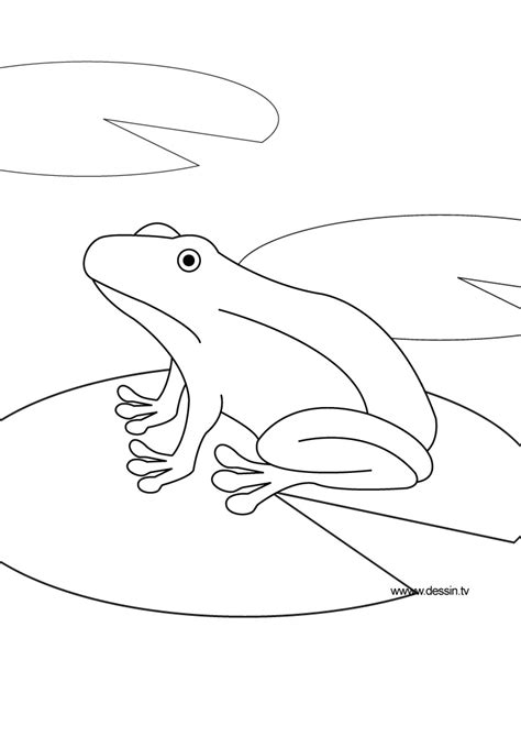 Free Coloring Pages Of Pond Animals Pond Coloring Page