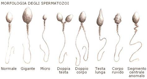 diversi tipi di vagine nuova tecnica sperimentale di fecondazione contro la