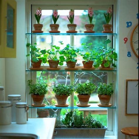 Window Herbs Herb Window Display Napa House