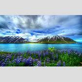Nature Beautifu...