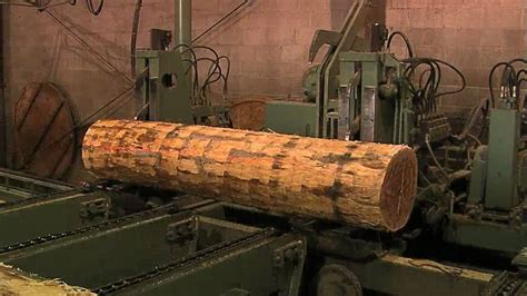 production woodworker logging and veneer process no narration